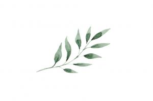 leaves-04